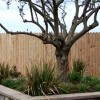 Wood Fencing
